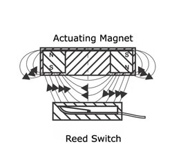 magnetic proximity switch reed type